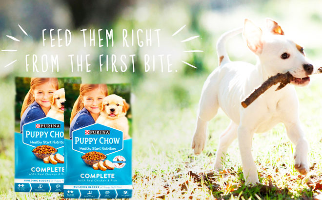 Possible FREE Purina Puppy Chow Samples (PinchMe Members Only – Sign Up Now!)