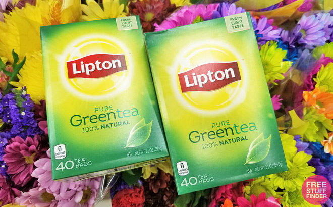Lipton Pure Green Tea for Just $1.99 at Publix (Regularly $3) – Print Coupon Now!