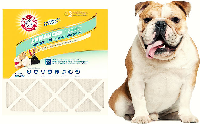 Arm & Hammer 12-Pack Air Filters JUST $54 + FREE Shipping (Regularly $99) - Today ONLY!