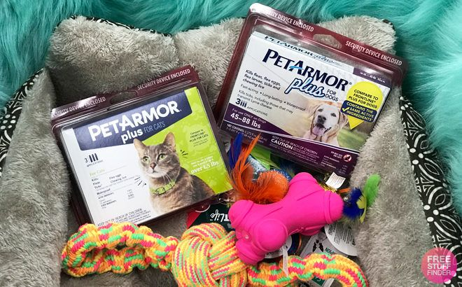 Petarmor Plus Flea Amp Tick Protection For Dogs And Cats