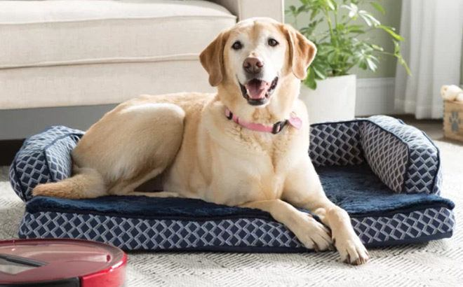 Dog Beds Sale Up to 78% Off (Starting at ONLY $8) – Many Styles to Choose from!