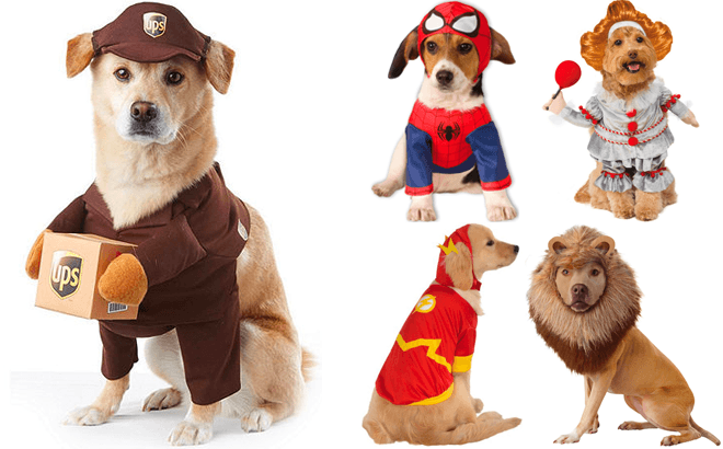 Pets' Costumes From Just $5.60 at JCPenney - SO Many Styles! Last Chance!