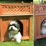 wooden-dog-house-1