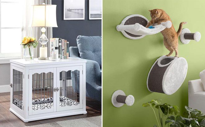Up to 90% Off Pet Essentials Clearance Sale at Wayfair (From ONLY $10.79) - So Cute!