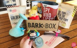 FREE Extra Month of BarkBox with Subscription ($40 Value!)