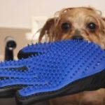 Pet-Hair-Remover-Glove