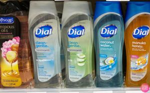 Dial Clean + Gentle Body Wash $1 Each!